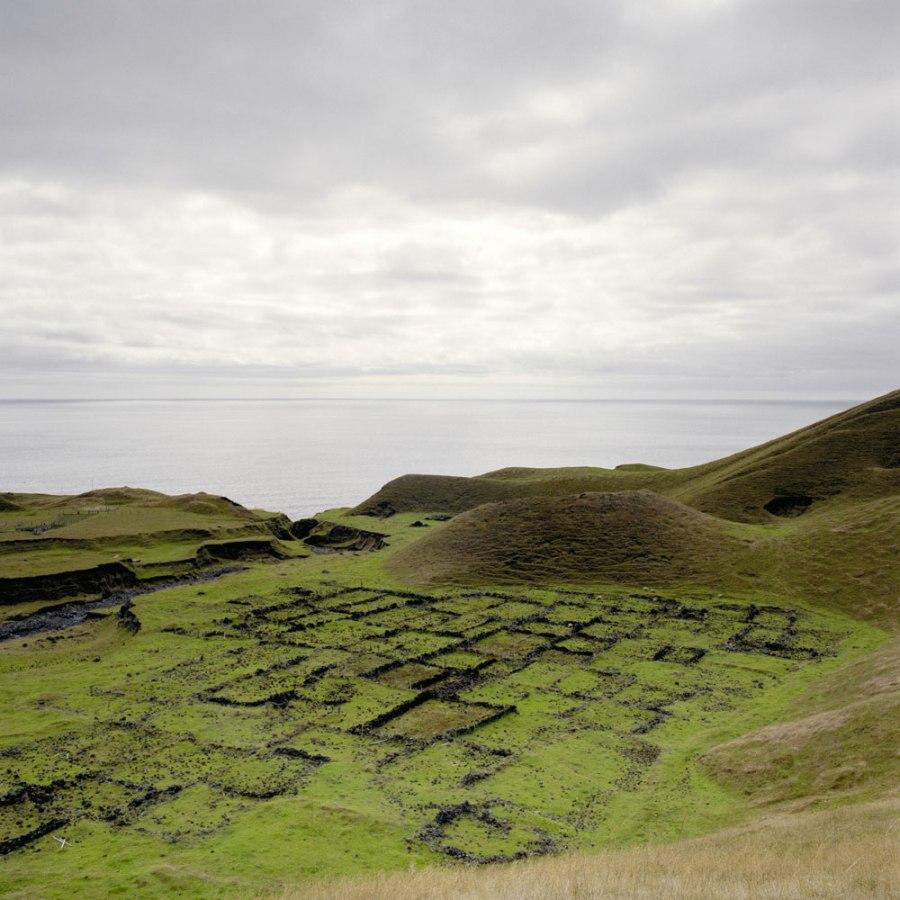 Tristan da Cunha - First Potato Patches